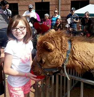 Image of a girl feeding a camel at a past Family Fun Day.