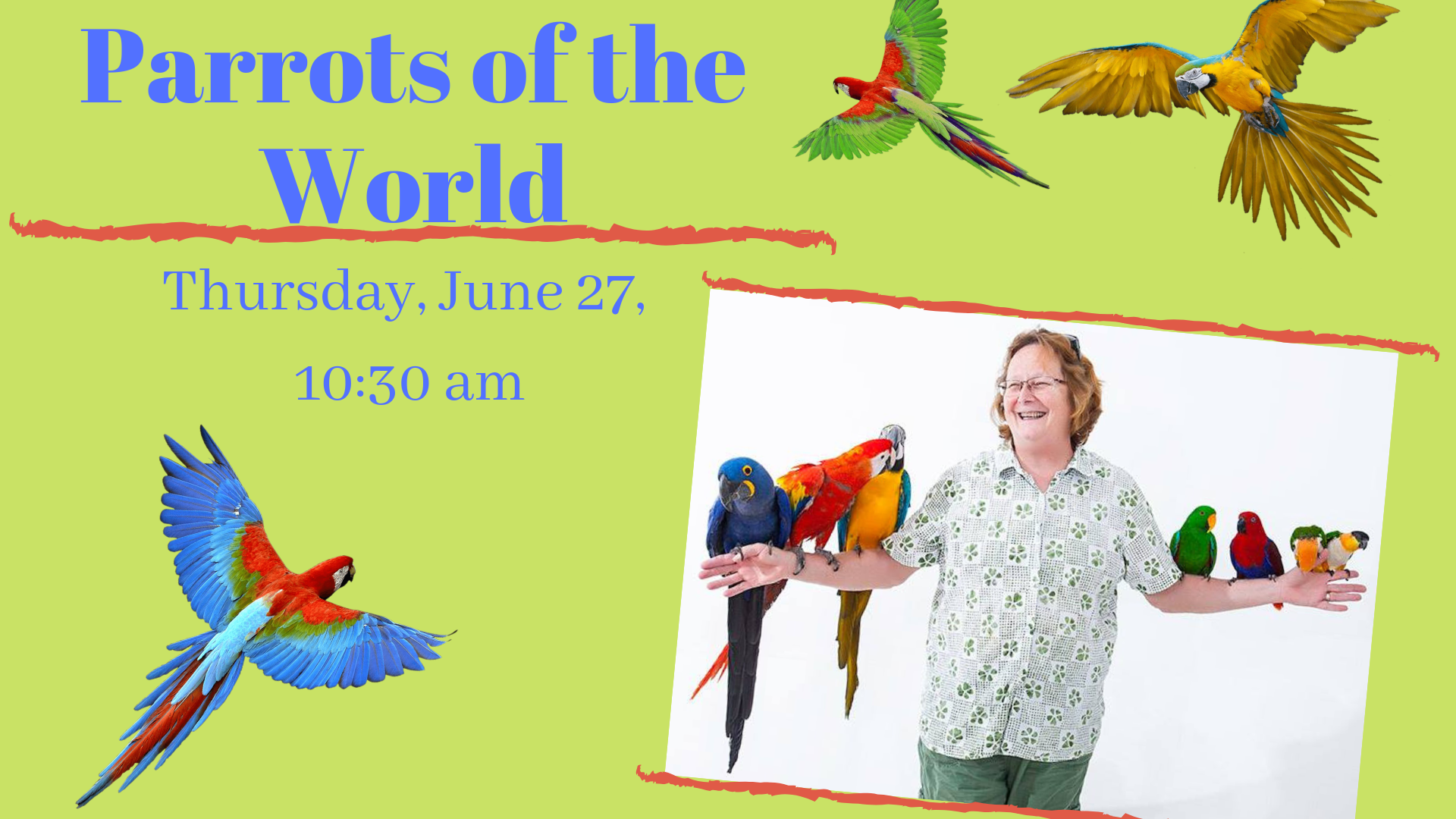 parrots of the world image